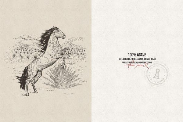 2-ilustracion-y-sello
